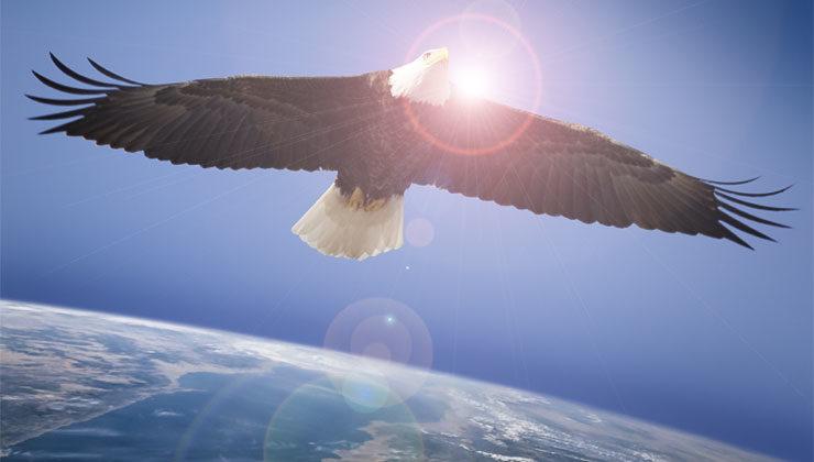 ¡Pelea como águila!